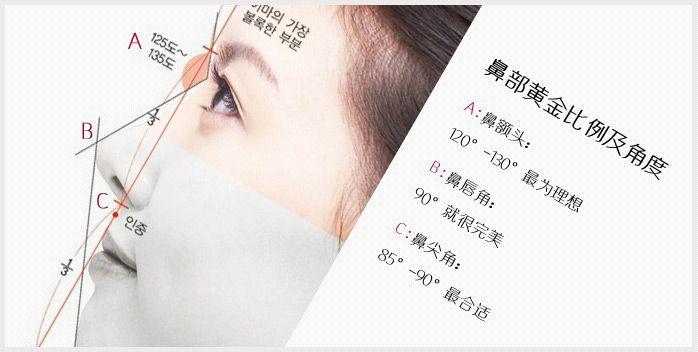 """【美莱资讯】较美的鼻型,""""海鸥线""""你知道吗?"""