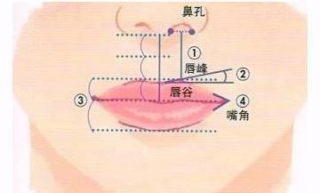 唇部整形美容