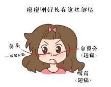 上海美莱美容护肤技巧