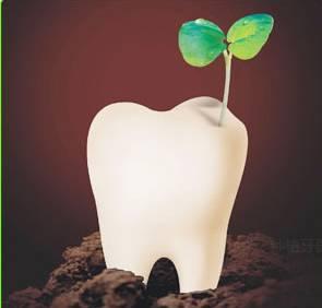 美莱牙齿修复