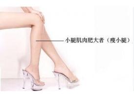 一般瘦小腿需要多少钱