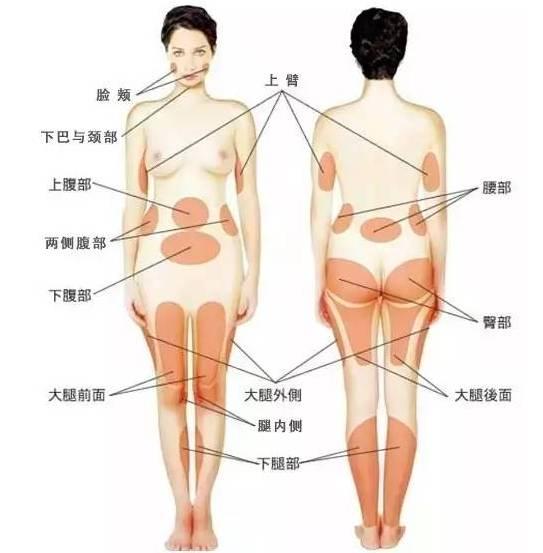上海美莱吸脂减肥