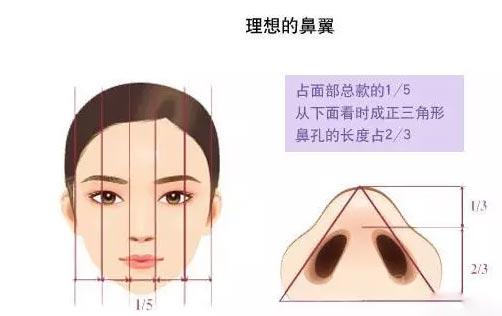上海美莱鼻翼缩小术