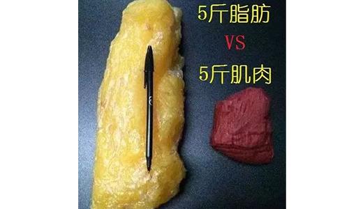 上海吸脂减肥医院那家好