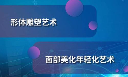 中国医疗美容大会美莱举办