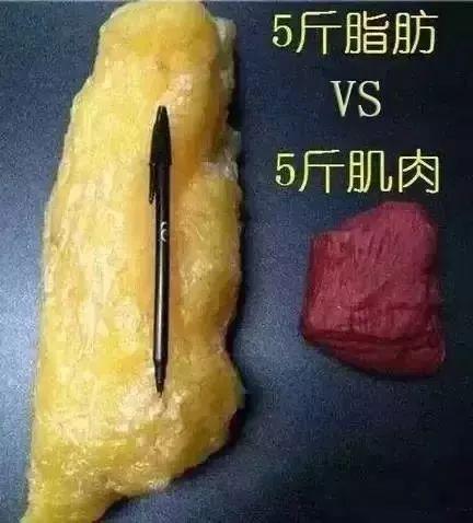上海有什么方法可以快速减肥
