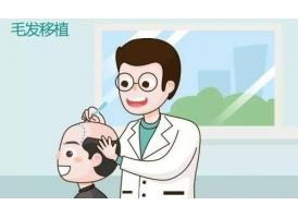 上海美莱医疗植发怎么样