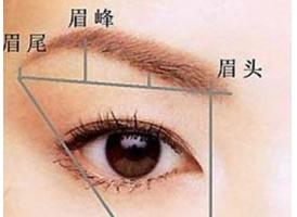 上海眉毛种植去哪家医院效果好