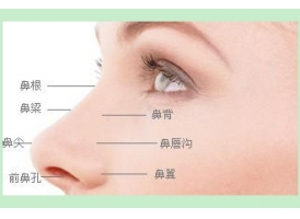 鼻形矫正适应症有哪些