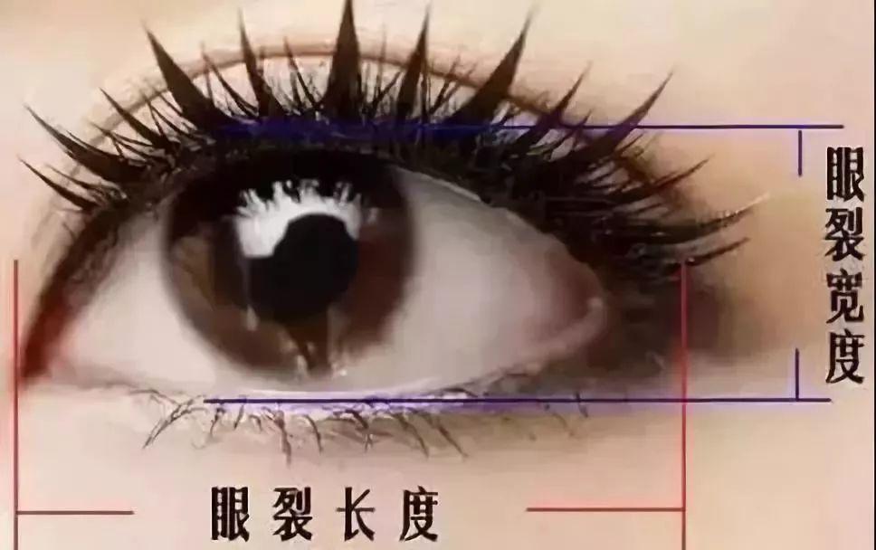 什么样的双眼皮好看自然