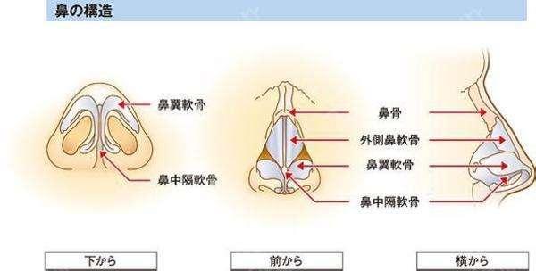 上海做鼻中隔整形需要多少钱贵不贵