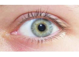 上海韩式双眼皮费用一般是多少呢,术后多久可以洗脸