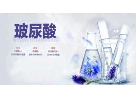 上海美莱申涛主任讲解玻尿酸