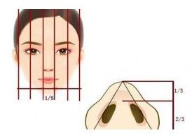 上海医院:鼻头整形需要多少钱?