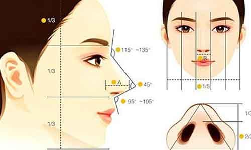 上海鼻子整形修复多少钱
