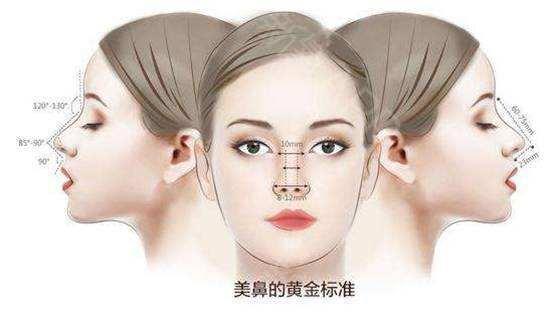 上海做耳软骨隆鼻多少钱