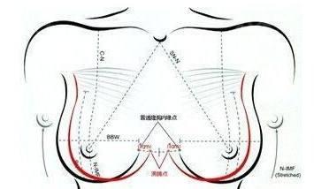 丰胸自体脂肪隆胸手术费用是多少