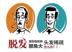 上海做植发须要多少钱