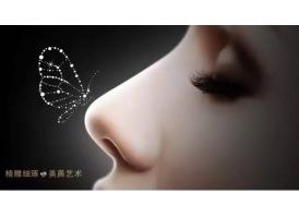 上海鼻综合|美鼻设计结构半肋鼻