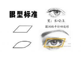 上海美莱科普四种常见的双眼皮类型