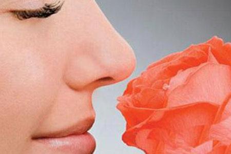 做鼻头缩小整形手术需要多少钱